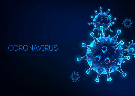 "Towards entry ""Coronavirus: Contacting Members of the Chair"""